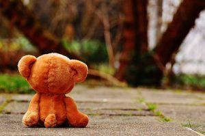 bear-1272799_1280